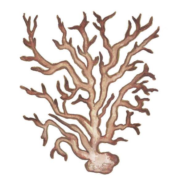 Coral Digital Art - Coastal Icon Coral IIi by Elizabeth Medley