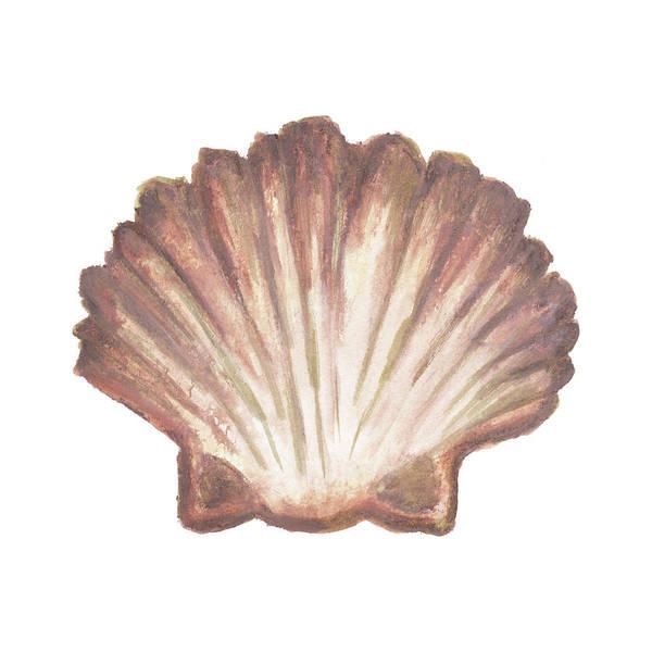 Coral Digital Art - Coastal Icon Coral Vi by Elizabeth Medley