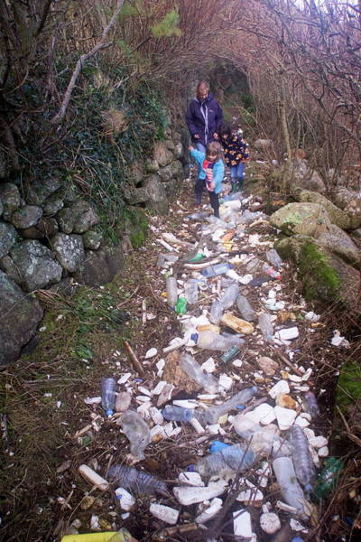 Litter Photograph - Coastal Litter by Simon Fraser/science Photo Library