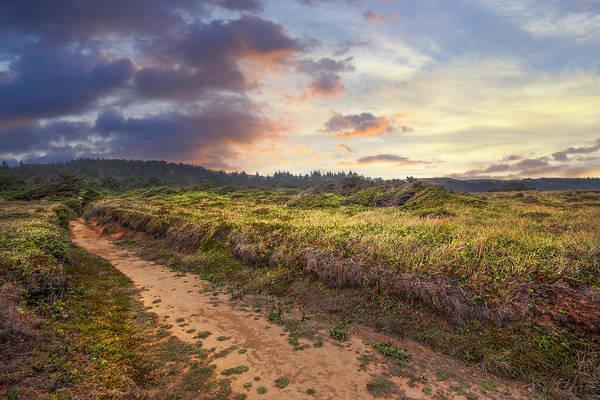 Photograph - Coastal Trail by Debra and Dave Vanderlaan