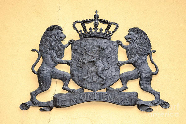 Photograph - Coat Of Arms Of The Netherlands by David Hill