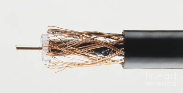 Cabling Photograph - Coaxial Cable With Wires Exposed by Dorling Kindersley