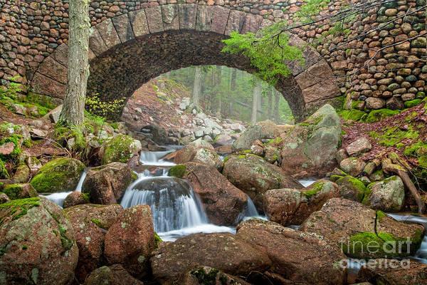 Photograph - Cobblestone Bridge In Acadia by Susan Cole Kelly