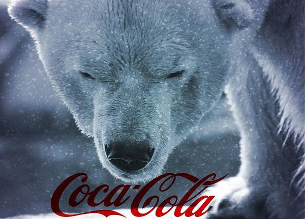 Polar Bear Photograph - Coca Cola Polar Bear by Dan Sproul