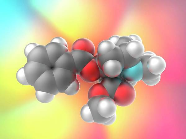 Molecular Wall Art - Photograph - Cocaine Drug Molecule by Alfred Pasieka/science Photo Library