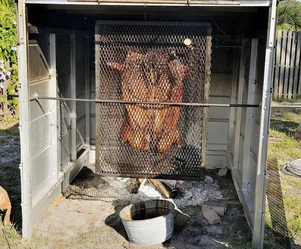 Photograph - Cochon De Lait -roasting by Bradford Martin