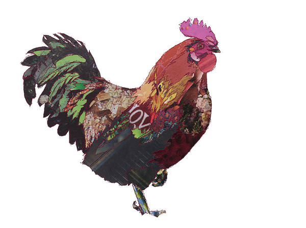 Stitch Painting - Cock Of The North by MGL Meiklejohn Graphics Licensing