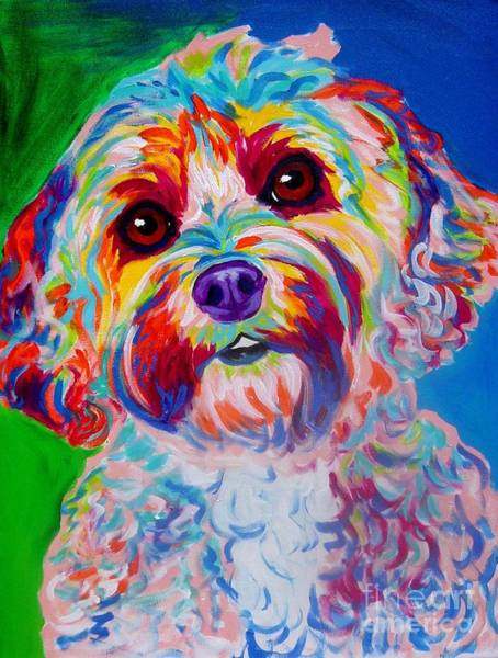 Poodle Wall Art - Painting - Cockapoo - Carmie by Alicia VanNoy Call