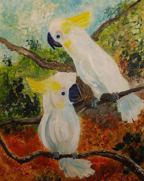 Wall Art - Painting - Cockatoo's by Rich Mason