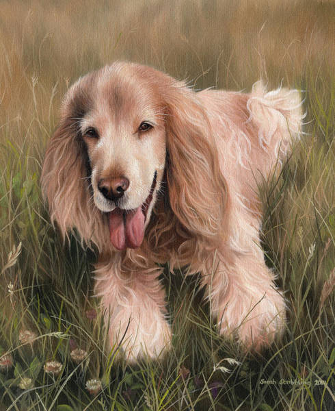 Field Spaniel Painting - Cocker Spaniel by Sarah Stribbling