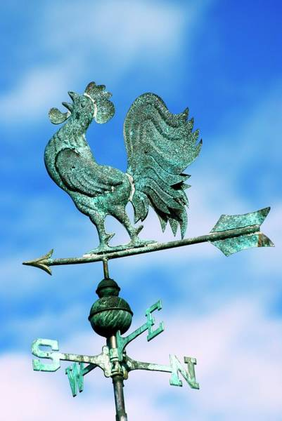 Weather Vane Photograph - Cockeral Weather Vane by Ian Gowland/science Photo Library