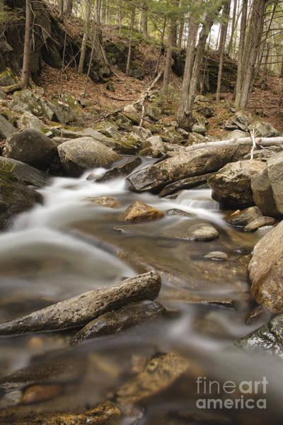 Photograph - Cockermouth River - Groton New Hampshire Usa by Erin Paul Donovan