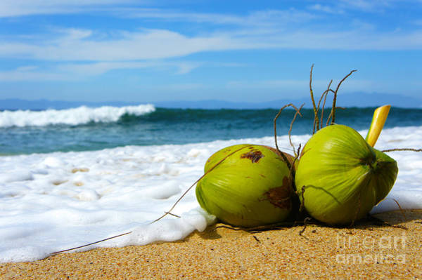 Coconut Wall Art - Photograph - Coconut by Aged Pixel