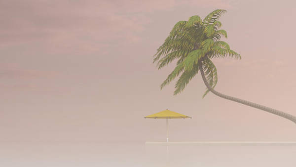 Sunshade Digital Art - Coconut Palm And Sunshade In Haze, 3d by Westend61