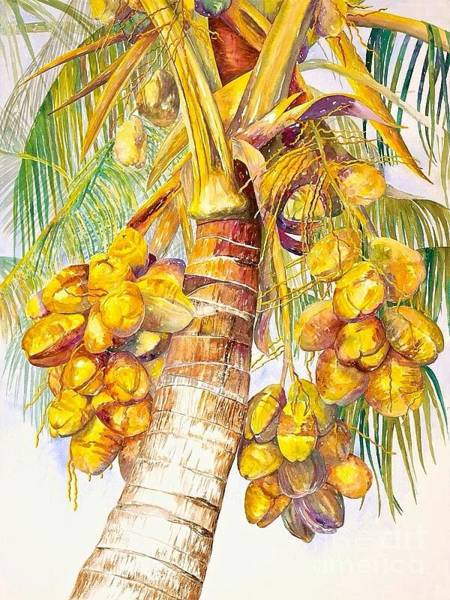 Painting - Coconut Palm by AnnaJo Vahle