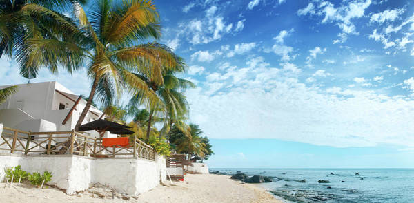 Villa Photograph - Coconut Palms And Beach At Mauritius by Narvikk