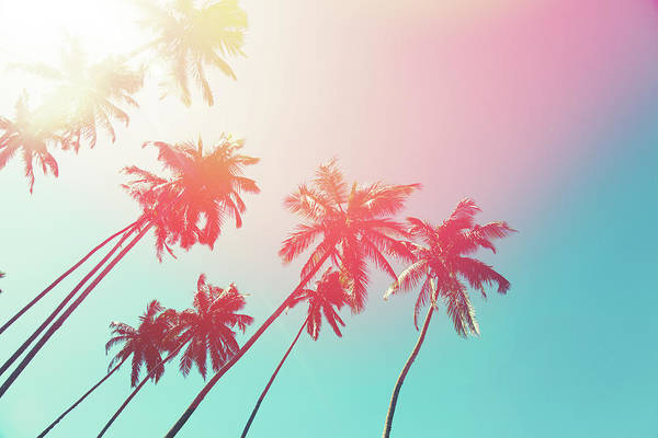Photograph - Coconut Trees And Turquoise Indian Ocean by Danilovi