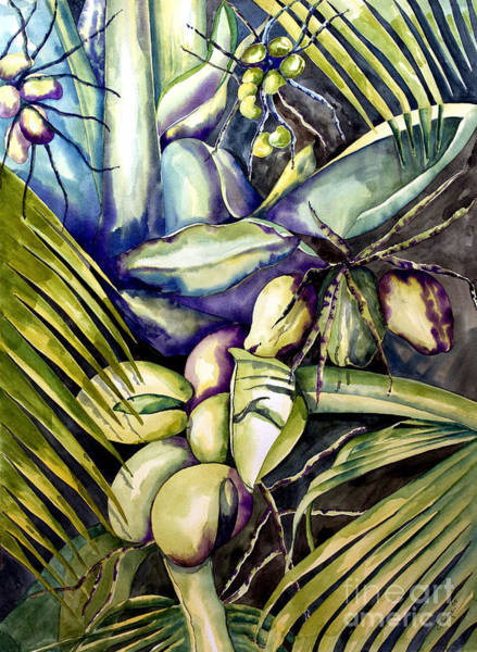 Painting - Coconuts by Kandyce Waltensperger