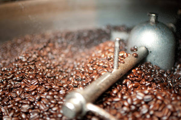 Coffee Photograph - Coffee Beans Being Cooled After Roasting by Cowlickcreative