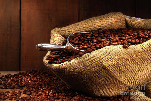 Wall Art - Photograph - Coffee Beans In Burlap Sack by Sandra Cunningham