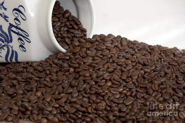 Photograph - Coffee Beans With Porcelain Jar by Gunter Nezhoda
