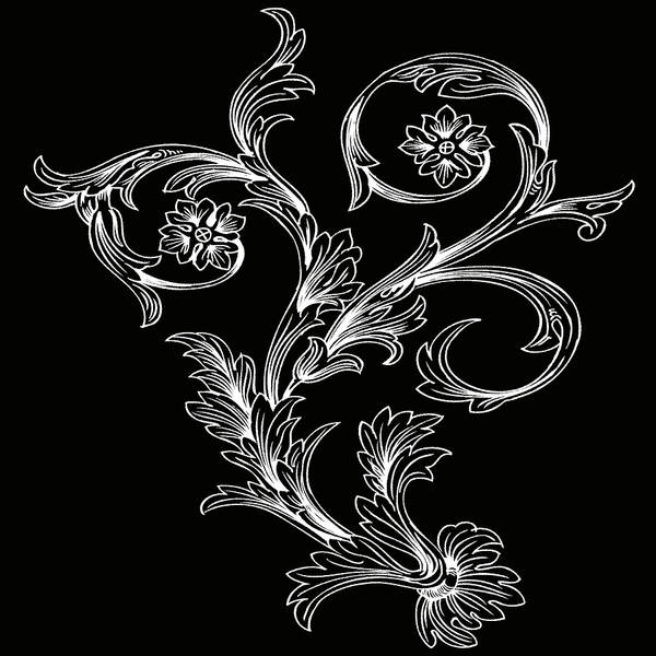 Digital Art - Coffee Flowers 3 Bw by Angelina Tamez