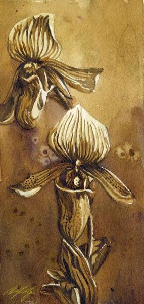 Painting - Coffee Orchid by Alfred Ng