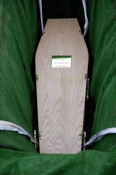 Buried Wall Art - Photograph - Coffin Being Lowered Into The Ground by Mark Thomas/science Photo Library