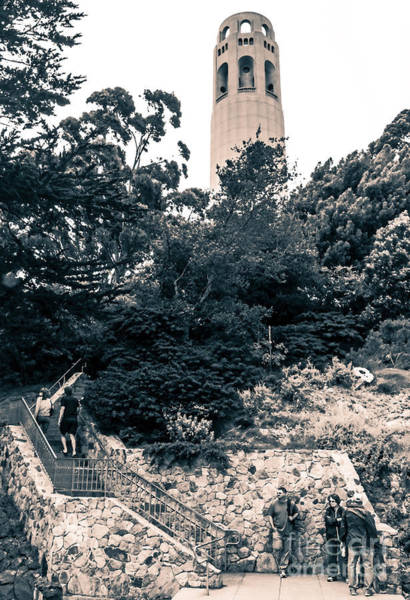 Photograph - Coit Tower In Two Tones by Kate Brown