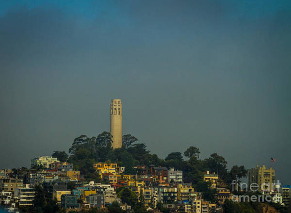Coit Tower Photograph - Coit Tower Morinig Sun by Mitch Shindelbower