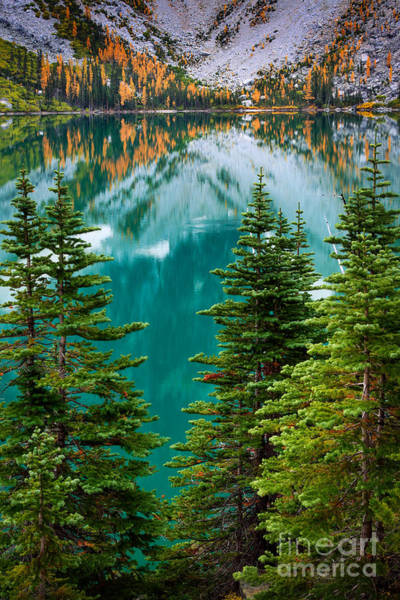 Alpine Lakes Wilderness Photograph - Colchuck Reflection by Inge Johnsson