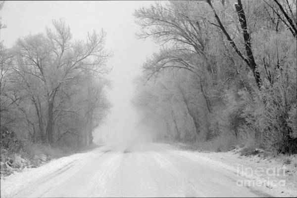 Fruita Photograph - Cold And Lonely by Bob Hislop