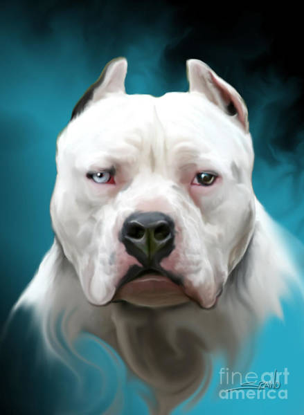 Cold As Ice- Pit Bull By Spano Art Print