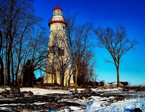 Photograph - Cold At Marblehead by Nick Zelinsky