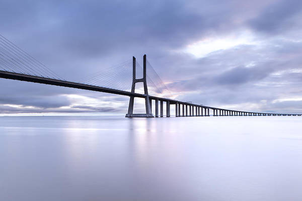 Photograph - Cold by Jorge Maia