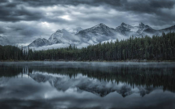 Misty Photograph - Cold Mountains by Michael Zheng
