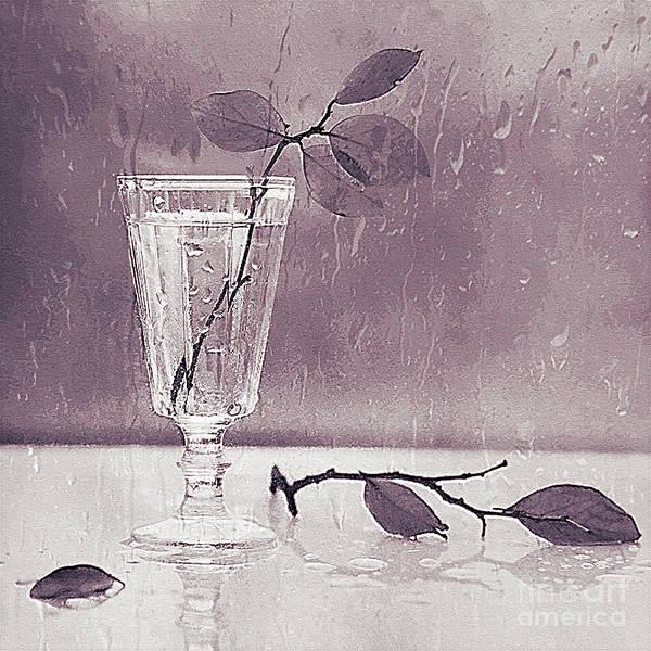 Post-impressionism Photograph - Cold Rain Bw Still Life  by Still-Life