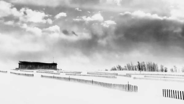 Misson Photograph - Cold Winter Day by Lise Misson
