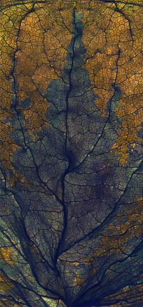 Gold Leaves Digital Art - Coleus Window by Julia McLemore