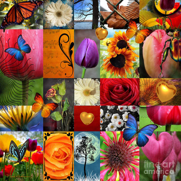 Passion Flower Photograph - Collage Of Happiness  by Mark Ashkenazi