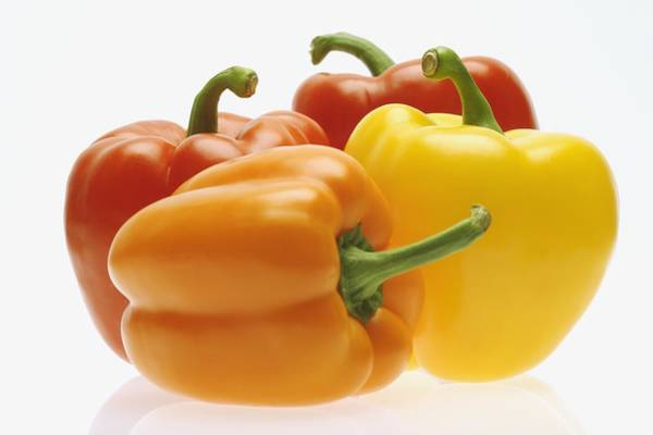 Vegies Photograph - Collection Of Colorful Peppers by Kelly Redinger