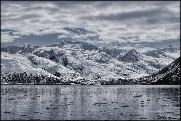 Photograph - College Fjord by Erika Fawcett