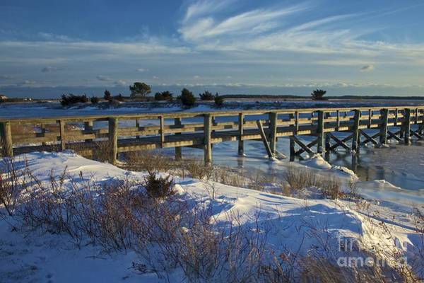 Photograph - Colonial Acres Cape Cod by Amazing Jules