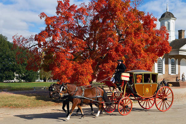 Photograph - Carriage In Autumn by Jerry Gammon