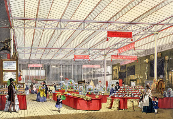 Palace Drawing - Colonial Produce In The Great by English School