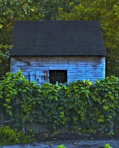 Photograph - Colonial Tobacco Barn by John Feiser