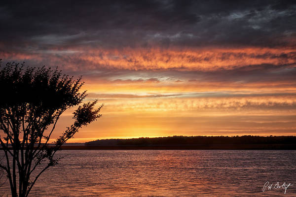 Silhoutte Photograph - Color At Last Light by Phill Doherty