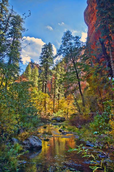 Oak Creek Canyon Painting - Color Blast by Brian Lambert