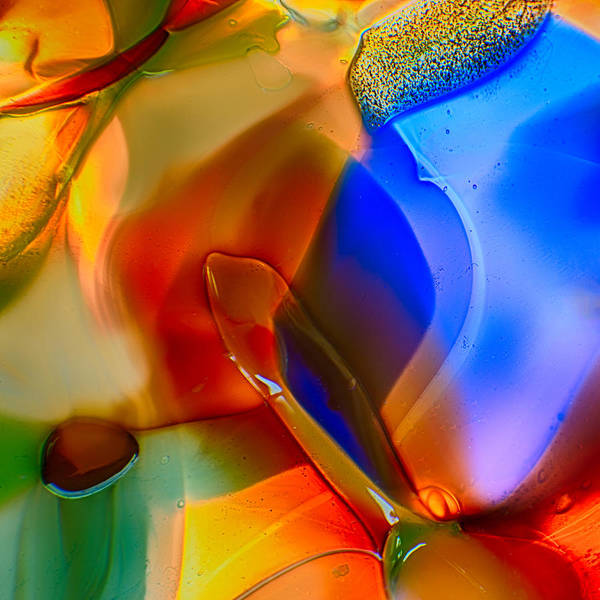 Photograph - Color Friends by Omaste Witkowski