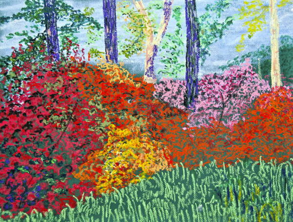 Wall Art - Painting - Color In Bloom by Jennifer Ryan